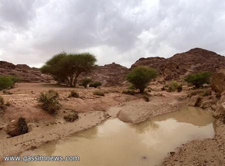 الأمطار تروي شعاب وأودية محافظة النبهانية