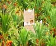 «السياحة» تشرك المناطق في إدارة التنمية وحماية التراث وتحديد أولويات المشروعات