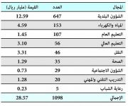 «المالية» تُجيز 1098 مشروعاً خلال 2015 بقيمة 28.6 مليار ريال