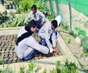 بنك الرياض وجمعية الأحساء يدربان 15 معوقاً عقلياً على الأعمال الزراعية
