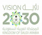 رؤية سعودية يابانية مشتركة لعام 2030 تنطلق في الرياض.. اليوم
