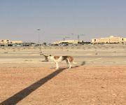 اولياء امور الطالبات ابدو تخوفهم : الكلاب الضالة تحاصر جامعة القصيم
