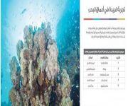 مشروع «البحر الأحمر» يعزز صناعة السياحة في المملكة.. ويستثمر كنوز الساحل الغربي
