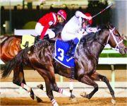 ميدان الملك عبدالعزيز يستضيف سباقات 64 حفلًا بالموسم الجديد