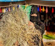 سبعينية شمالية تخطف عدسات المصورين في ربيع بريدة ٣٩