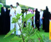 أكثر من ١٠٠ أسرة سعودية منتجة تستفيد من مهرجان الرمان الرابع بالشيحية