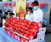 أكثر من ٧٥ مزرعة مُشاركة في مهرجان الرمان الرابع تُبدع بـ عرض منتجاتها